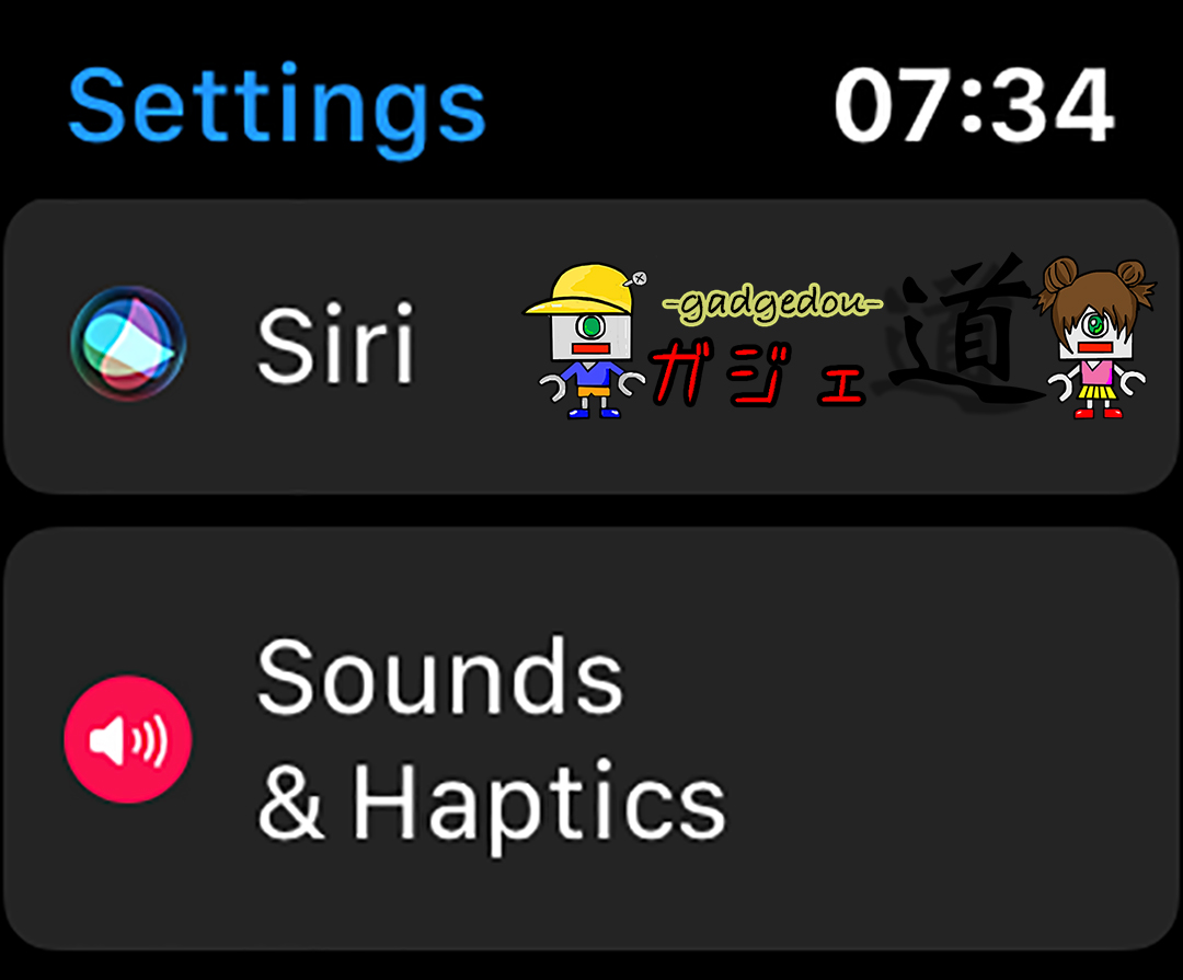 Apple Watch Volume